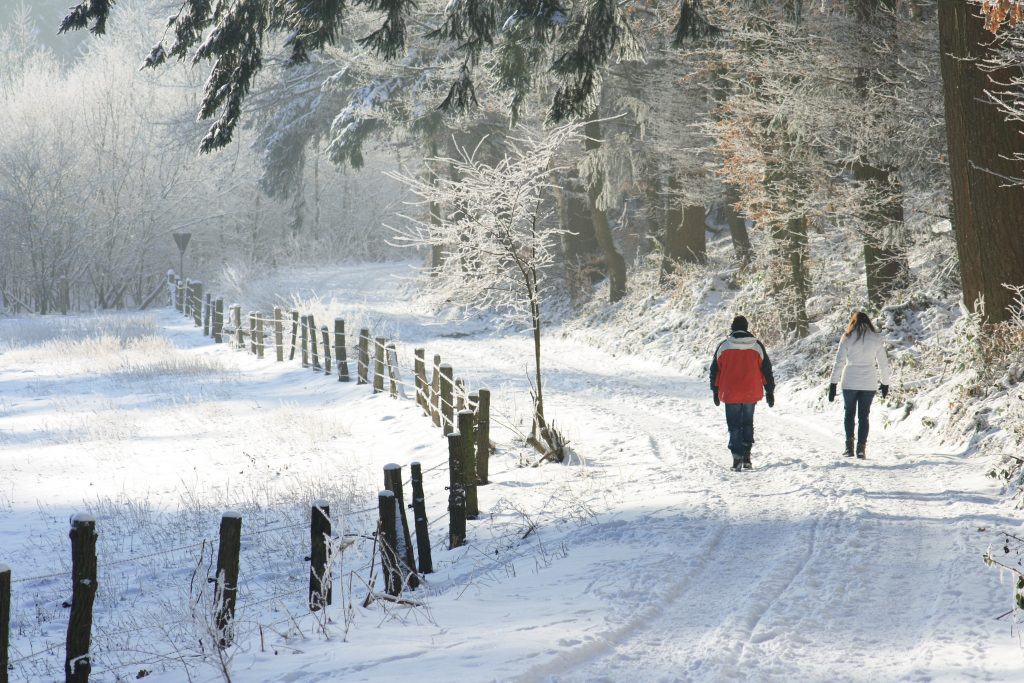 Winterspaziergang1